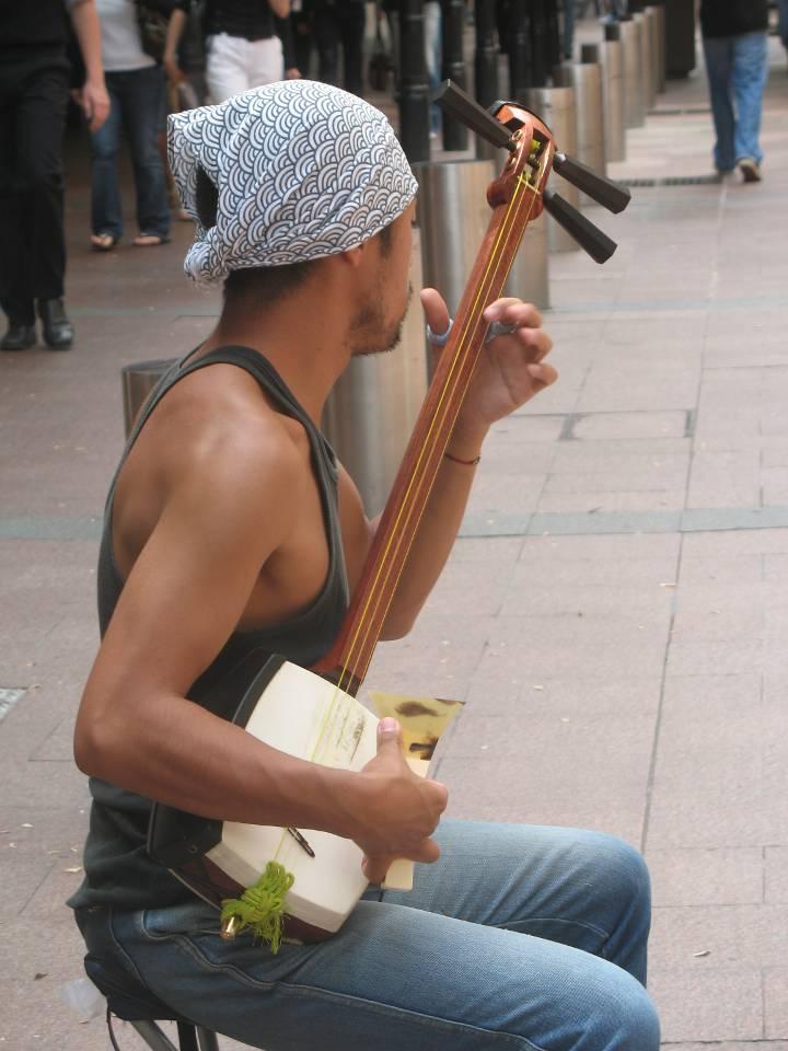 Japanese Instrument Shamisen