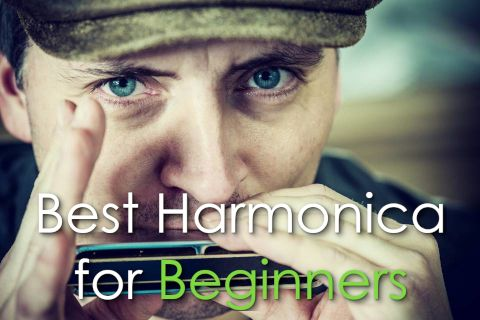 best harmonica for beginners