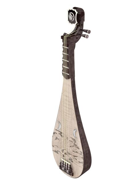 chinese instrument pipa